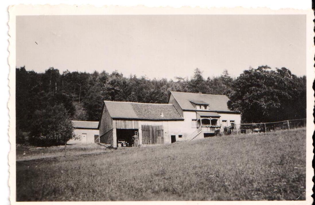 Blick vom Feld auf das Gasthaus
